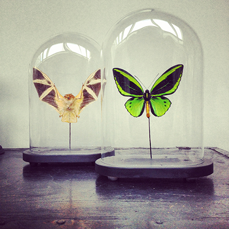 Upcycling markt TRASH deluxe: Animaux Speciaux